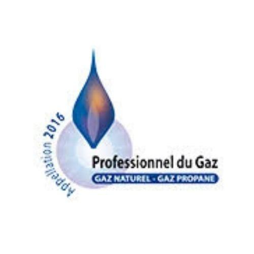 Professionnel du Gaz naturel